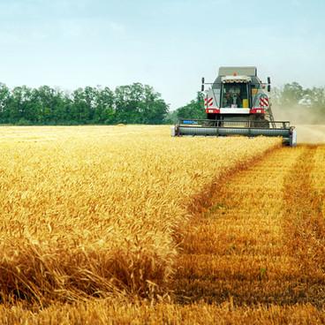 Jordbrukets förutsättningar